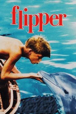 flipper_box_250