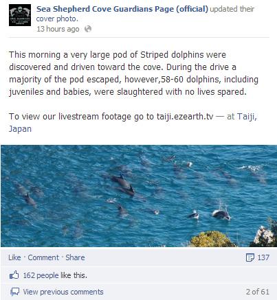 Sea Shepherd Cove Guardians Page (official) - Google Chrome 18012013 203522.bmp