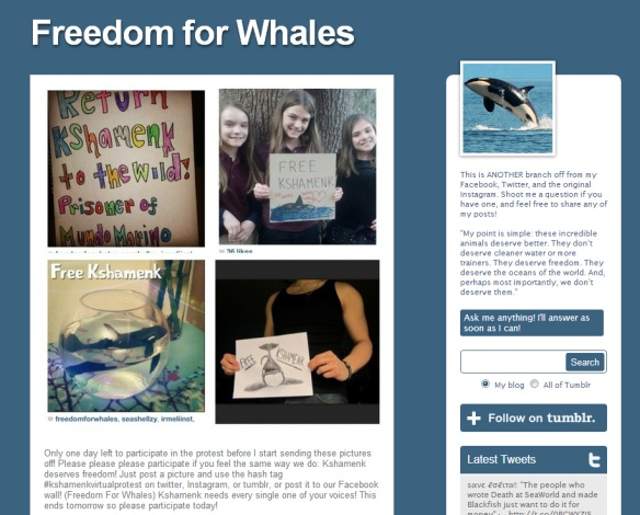 Freedom for Whales - Google Chrome 01022013 141945.bmp