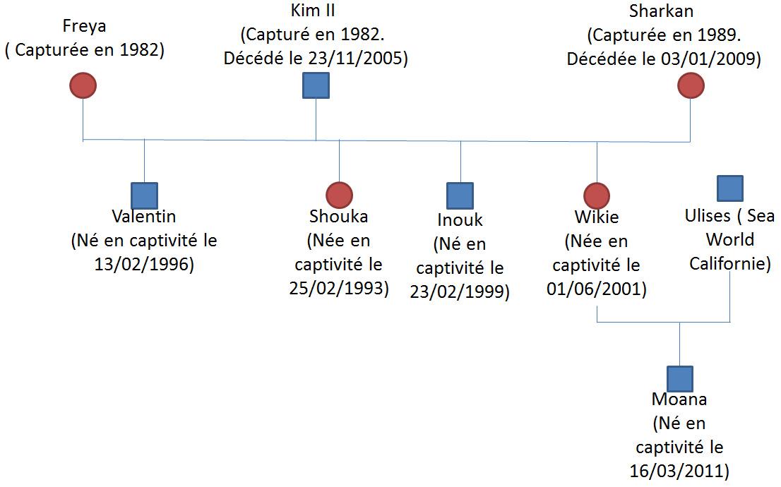 Présentation1 - Microsoft PowerPoint utilisation non commerciale 11042013 155842.bmp